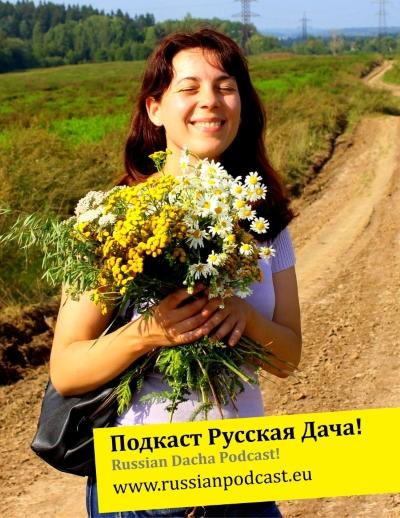 Russian dacha learn Russian