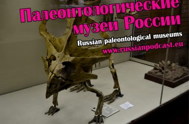 Russian paleontological museums